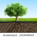 tree with roots and soil | Shutterstock . vector #1024448425