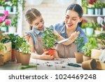 cute child girl helping her... | Shutterstock . vector #1024469248