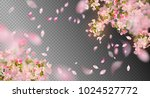 Stock vector vector background with spring cherry blossom sakura branch in springtime with falling petals and 1024527772