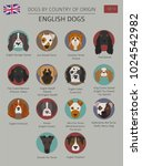 dogs by country of origin.... | Shutterstock .eps vector #1024542982