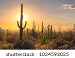 sunset view of the arizona... | Shutterstock . vector #1024593025