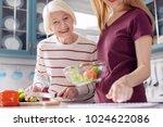 helpful technology. charming... | Shutterstock . vector #1024622086
