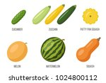 vector set of different... | Shutterstock .eps vector #1024800112