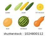 vector set of different...   Shutterstock .eps vector #1024800112