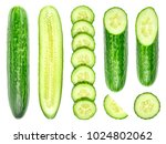 collection of fresh green... | Shutterstock . vector #1024802062