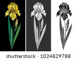vector set with embroidery iris ... | Shutterstock .eps vector #1024829788