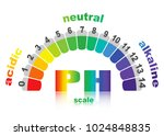 scale of ph value for acid and... | Shutterstock .eps vector #1024848835