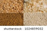 collage of various spice seeds. ... | Shutterstock . vector #1024859032