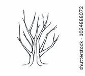 tree silhouette on white... | Shutterstock .eps vector #1024888072