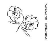 object flower line. vector | Shutterstock .eps vector #1024905892