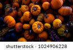 assorted squash and pumpkins...   Shutterstock . vector #1024906228
