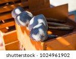 thai style dipper  thailand. | Shutterstock . vector #1024961902