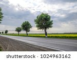asphalt road with trees on the... | Shutterstock . vector #1024963162