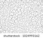 the cracks texture white and... | Shutterstock .eps vector #1024993162
