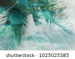 Palm Leaves Reflection Swimmin...