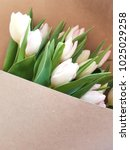 greeting card with tulips.... | Shutterstock . vector #1025029258