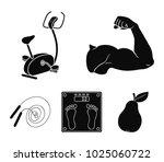 biceps  exercise bike  scales... | Shutterstock .eps vector #1025060722