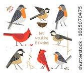 birdwatching  bird feeding icon ...   Shutterstock .eps vector #1025070475