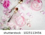 summer refreshing desserts....   Shutterstock . vector #1025113456