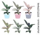 green indoor leafy flat style... | Shutterstock .eps vector #1025139646