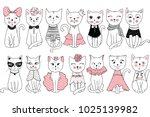 big collection with cute... | Shutterstock . vector #1025139982