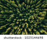 aerial top view of summer green ... | Shutterstock . vector #1025144698