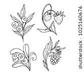 set of berries vector...   Shutterstock .eps vector #1025160676