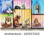Sad Animals In The Pound...