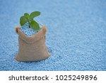 mint leaves in gunny sack on... | Shutterstock . vector #1025249896
