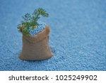 coriander leaves in gunny sack... | Shutterstock . vector #1025249902