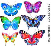 beautiful color butterflies set ... | Shutterstock . vector #1025272852