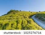 a chalk pathway leading up a...   Shutterstock . vector #1025276716