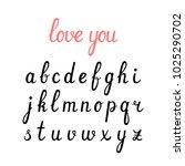 vector handwritten cursive... | Shutterstock .eps vector #1025290702