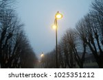 street lights in foggy weather  ... | Shutterstock . vector #1025351212