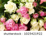 beautiful bouquet of white and... | Shutterstock . vector #1025421922