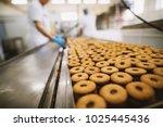 cookie factory  food industry....   Shutterstock . vector #1025445436