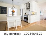 seaside  fl   usa   050116 ... | Shutterstock . vector #1025464822