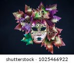 theatre mask  emotions | Shutterstock . vector #1025466922