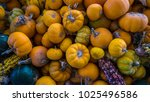harvest themed background... | Shutterstock . vector #1025496586