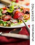 fresh organic romaine lettuce... | Shutterstock . vector #1025497402