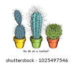 houseplants. different green... | Shutterstock .eps vector #1025497546