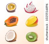 set of isolated tropical fruits ... | Shutterstock .eps vector #1025516896