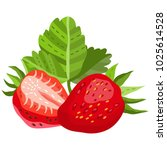 vector separated illustration... | Shutterstock .eps vector #1025614528