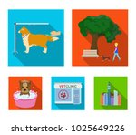walking with a dog in the park  ... | Shutterstock .eps vector #1025649226