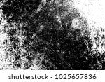 abstract background. monochrome ... | Shutterstock . vector #1025657836