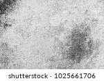 abstract background. monochrome ... | Shutterstock . vector #1025661706