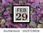 Small photo of Numbers on February 29. The number of days twenty-ninth. Concept:Calendar , Astronomy , Recorded date ,Determine , Diary, Deadline, anniversary ,holiday