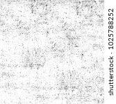 grunge black and white....   Shutterstock . vector #1025788252
