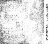 grunge black white. monochrome... | Shutterstock . vector #1025788306