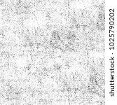grunge black and white.... | Shutterstock . vector #1025790202